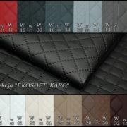 ekosoft karo new